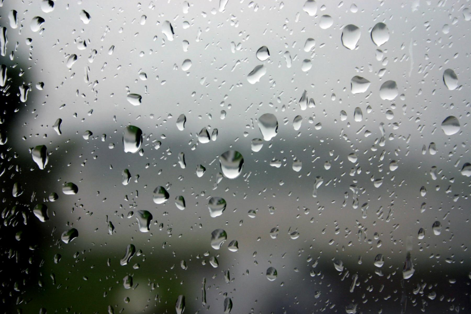 Plâns de ploaie verde